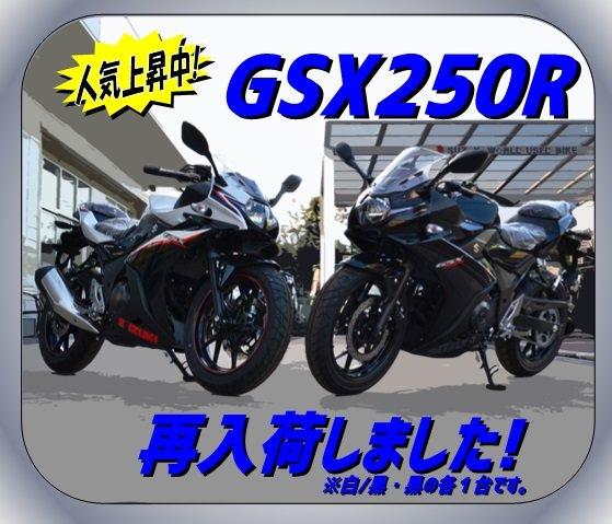 250R再入荷.jpg